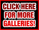 NEXT FREE GALLERY!